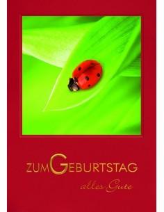 Geburtstagskarte-Marienkäfer auf Blatt