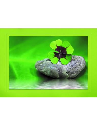 Kleeblatt auf Stein