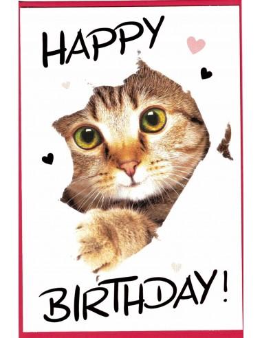 Geburtstagskarte-Katze