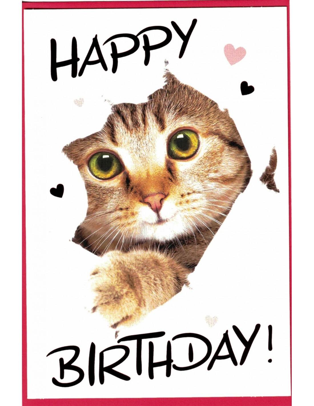 Geburtstagskarte Katze