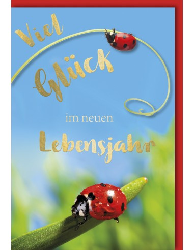Geburtstagskarte - Marienkäfer - Viel...