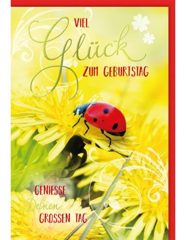 Geburtstagskarte - Viel Glück zum...